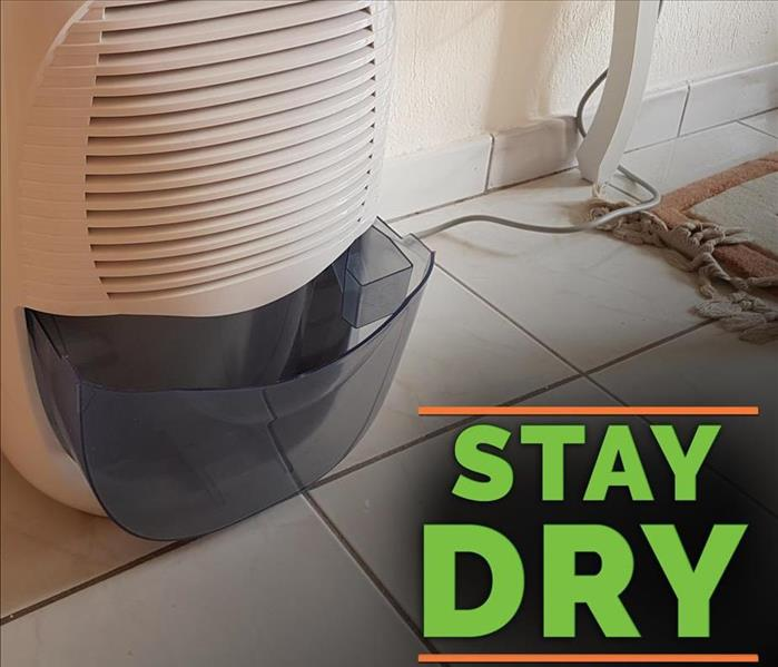 Dehumidifer with the words STAY DRY